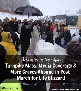 snow-mass-blog-pin