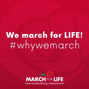 MFL logo why we march